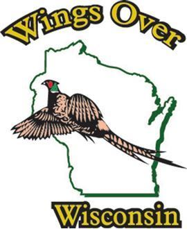 Picture of Wings Over Wisconsin - 2019 Football Crazr