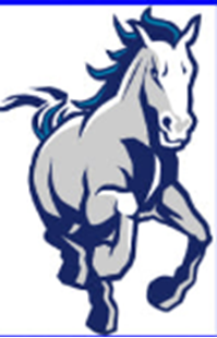 Picture of Council Bluffs Colts - 2020 Football Crazr