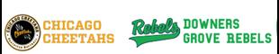 Picture of Cheetahs & Rebels Softball - 2020 Football Crazr