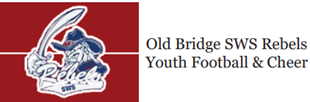 Picture of Old Bridge SWS Rebels Youth Football & Cheer  - 2020 Football Crazr